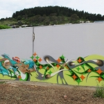 christchurch-graffiti-view