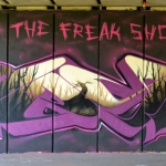 the-freak-show